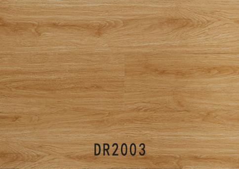 经济系列 DR2003
