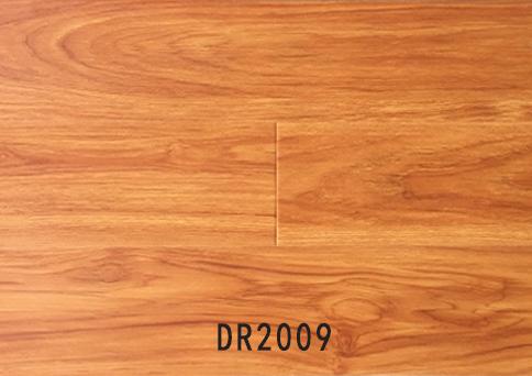 经济系列DR2009