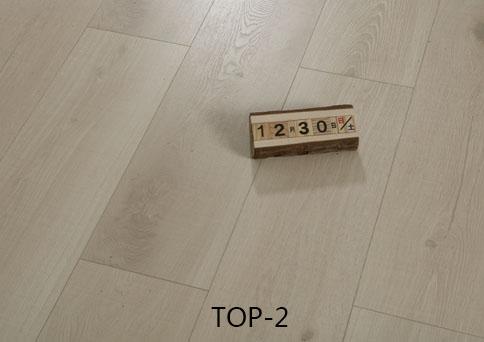 TOP-2